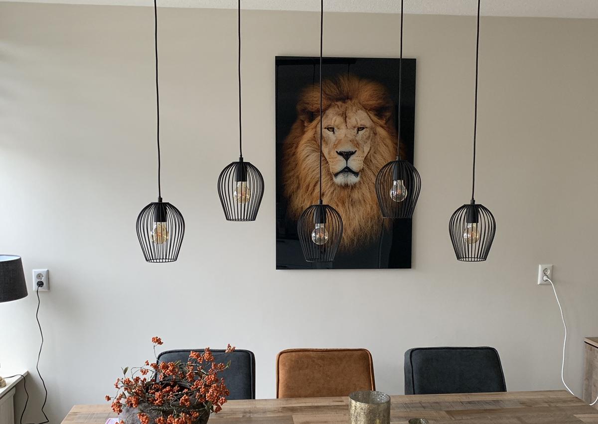 Leeuw-voorbeeld
